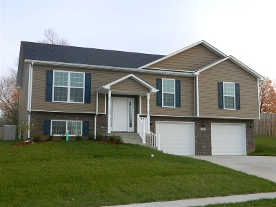 Elizabethtown Single Family Home For Sale: 201 Riley Way