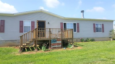 Rineyville Single Family Home For Sale: 141 Shale Lane