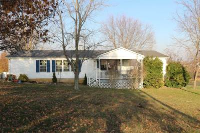 Vine Grove Single Family Home For Sale: 11800 Rineyville Road