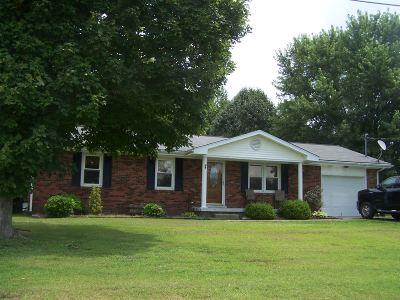 Rineyville Single Family Home For Sale: 517 Deckard School Road