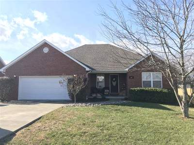 Hodgenville Single Family Home For Sale: 107 Livingood Lane