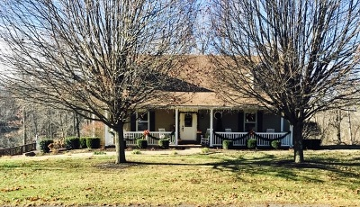 Campbellsville Single Family Home For Sale: 1040 Wise Road
