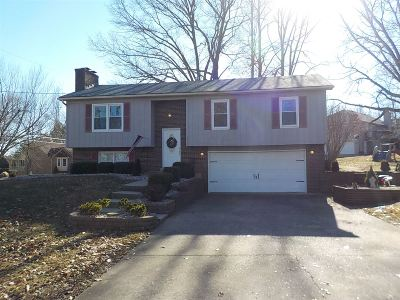 Brandenburg Single Family Home For Sale: 1317 Lakeshore Parkway