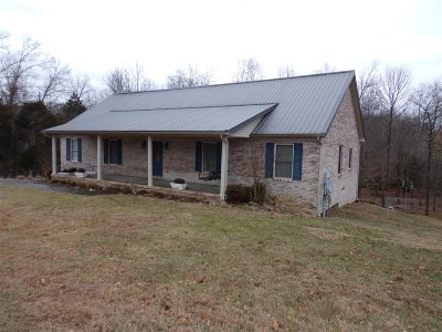 Leitchfield Single Family Home For Sale: 1450 King Road