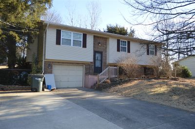 Elizabethtown Single Family Home For Sale: 2009 Pleasant View Drive