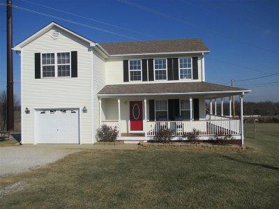 Vine Grove Single Family Home For Sale: 291 Kinkead Road