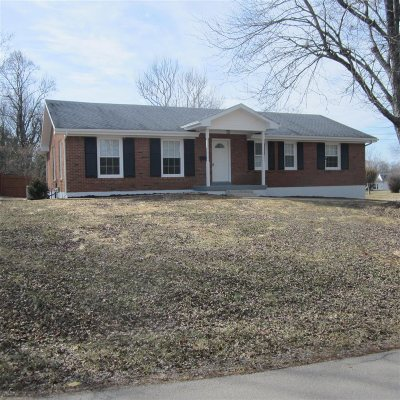 Brandenburg Single Family Home For Sale: 272 Lakeview Drive
