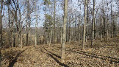 Meade County Residential Lots & Land For Sale: 3 Paulownia Drive