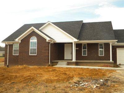 Elizabethtown Single Family Home For Sale: 67 Leesville Court