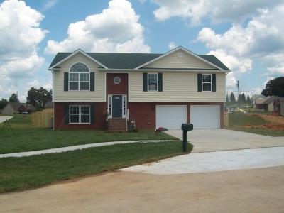 Vine Grove Single Family Home For Sale: 119 Ethan Court