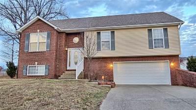 Meade County, Bullitt County, Hardin County Single Family Home For Sale: 605 Peaceful Drive