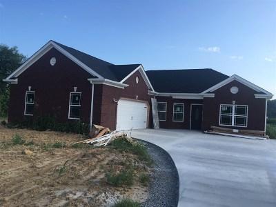 Meade County, Bullitt County, Hardin County Single Family Home For Sale: 219 House Lane