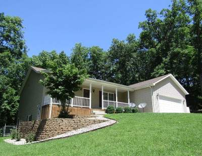 Meade County Single Family Home For Sale: 178 White Pine Lane