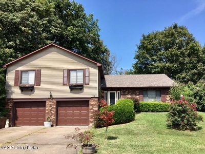 Radcliff Single Family Home For Sale: 104 Amanda Court