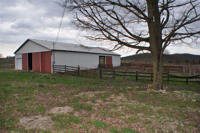 Breckinridge County Single Family Home For Sale: 1341 Jb Ball Lane