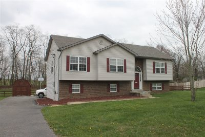 Rineyville Single Family Home For Sale: 189 Blake Drive