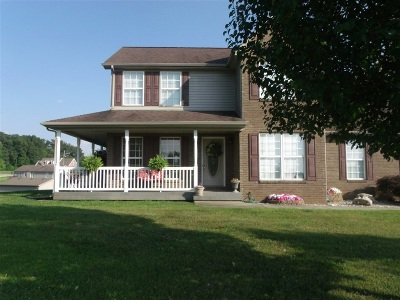 Rineyville Single Family Home For Sale: 253 Genrose Drive