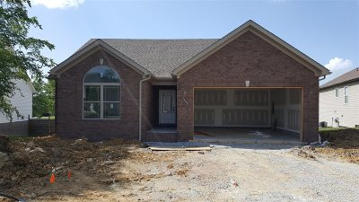 Bullitt County Single Family Home For Sale: 280 Meadowcrest Drive