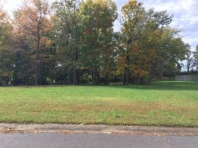 Elizabethtown Residential Lots & Land For Sale: Lot 20 Ray Street