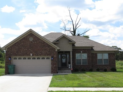 Vine Grove Single Family Home For Sale: 158 Twin Lakes Drive