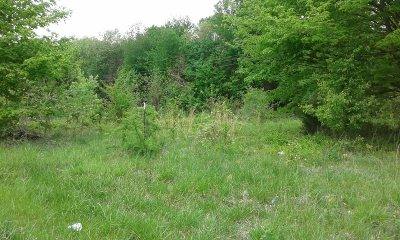 Radcliff Residential Lots & Land For Sale: 2480 Lake Road