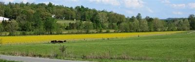 Rineyville Residential Lots & Land For Sale: 14253 St John Road