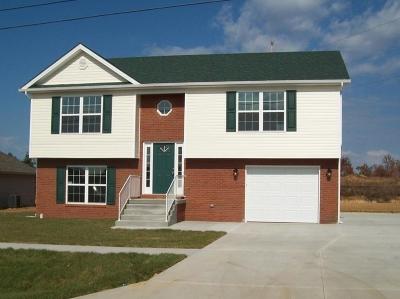 Vine Grove Single Family Home For Sale: 109 Ethan Court