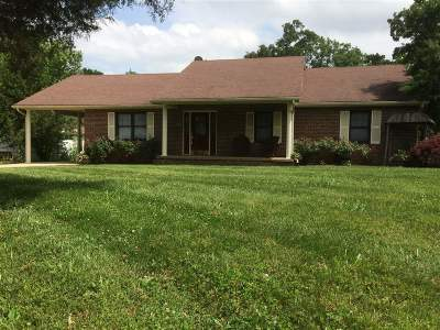 Brandenburg Single Family Home For Sale: 255 Rock Haven Road