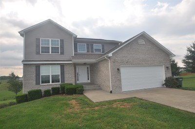Rineyville Single Family Home For Sale: 436 Trinity Drive