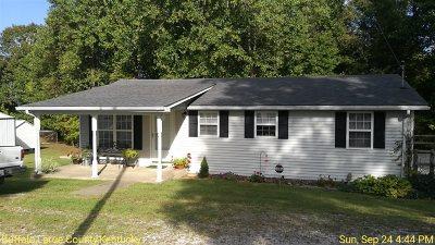 Buffalo Single Family Home For Sale: 166 East Bailey Road