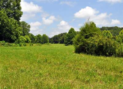 Meade County Residential Lots & Land For Sale: 755 Roach Road