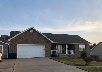 Meade County, Bullitt County, Hardin County Single Family Home For Sale: 204 Blue Ridge Way