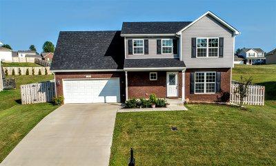 Meade County, Bullitt County, Hardin County Single Family Home For Sale: 205 Huckaberry Street