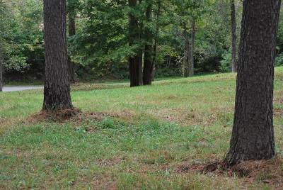Meade County Residential Lots & Land For Sale: Lot 3 Crosier Bottom Road