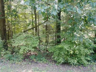 Meade County Residential Lots & Land For Sale: Lot 78 Doe Valley Parkway East