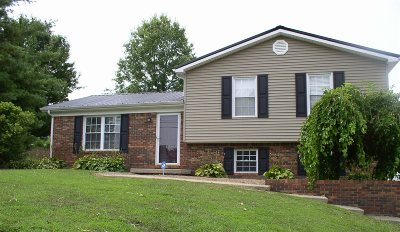 Leitchfield Single Family Home For Sale: 308 Cave Mill Road