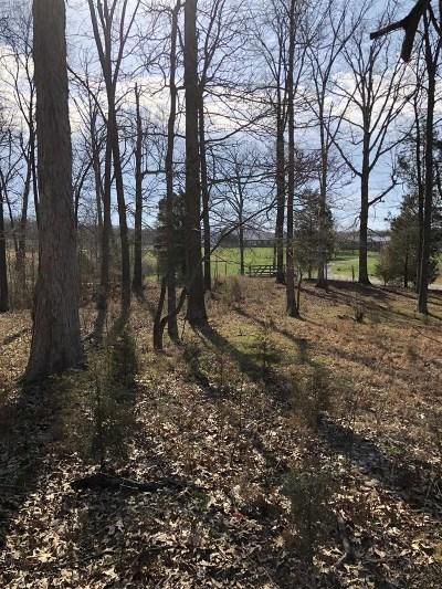 Meade County Residential Lots & Land For Sale: 1325 New Highland Church Road