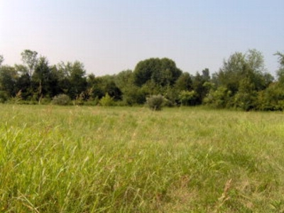 Meade County Residential Lots & Land For Sale: 30 and 31 Gilbert Court
