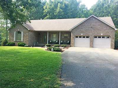 Taylor County Single Family Home For Sale: 380 Dragway Lane