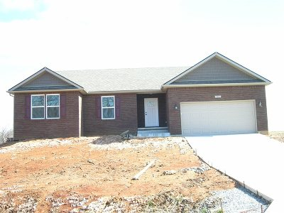 Elizabethtown KY Single Family Home For Sale: $259,000