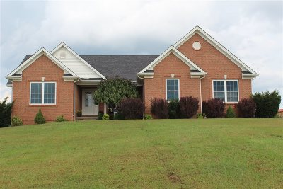 Rineyville Single Family Home For Sale: 289 Sunflower Drive