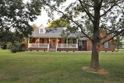 Rineyville Single Family Home For Sale: 7128 Rineyville Road