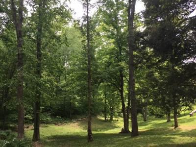 Elizabethtown Residential Lots & Land For Sale: Lot 38 Rippling Creek Place