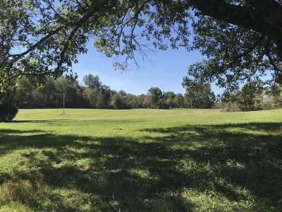 Meade County Residential Lots & Land For Sale: 125 Rock Ridge Road