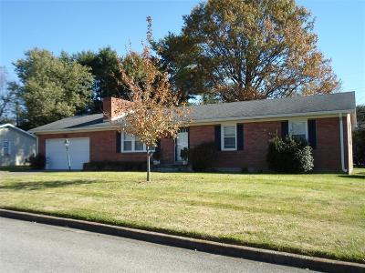 Elizabethtown Single Family Home For Sale: 411 Tricia Lane