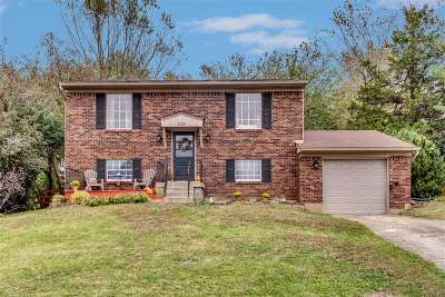 Elizabethtown Single Family Home For Sale: 922 Greenway Drive