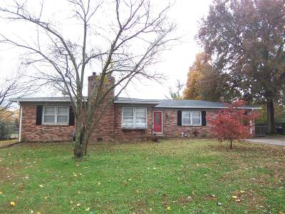 Nelson County Single Family Home For Sale: 4205 Frances Drive