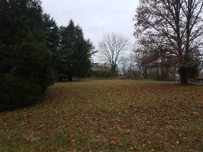 Meade County Residential Lots & Land For Sale: 205 River Cliff