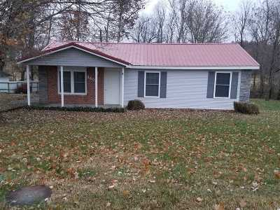 Buffalo Single Family Home For Sale: 3608 Greensburg Road