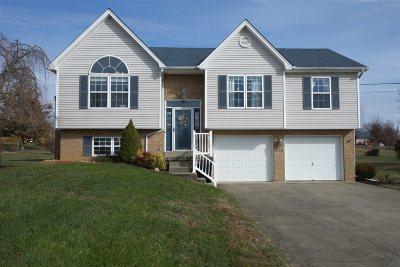 Elizabethtown KY Single Family Home For Sale: $174,500